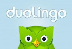 Duolingo búho